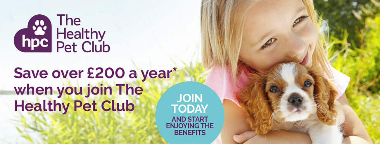 The Healthy Pet Club advert